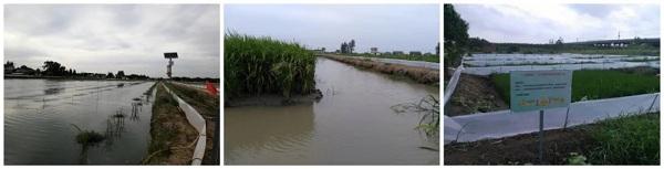 特种水产养殖技术